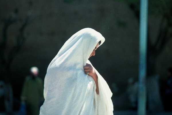 albums albums publics concours hayek algerien photo précédente photo ...